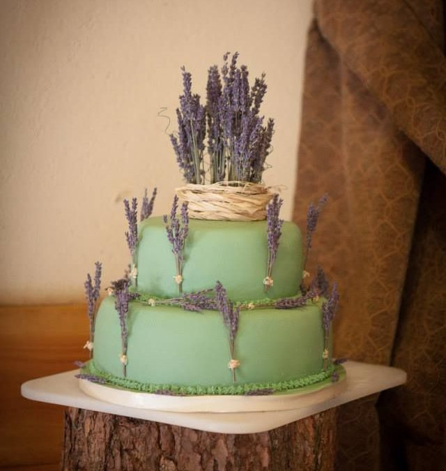 Eco Tips – Wedding Cakes that are green!